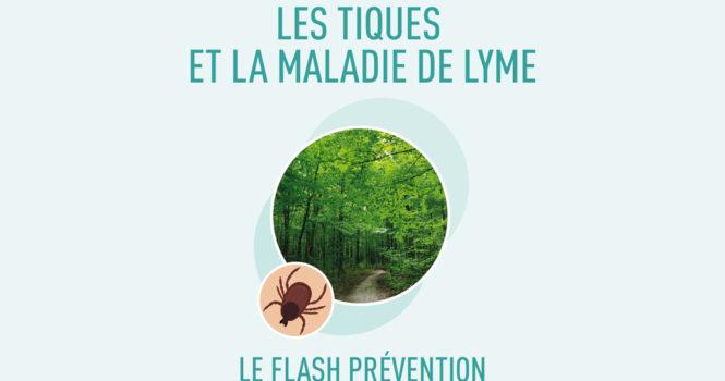 Tiques et maladie de Lyme : le flash prévention