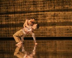 Spectacle de danse à Grenoble : Catherine Diverrès entre jour et nuit