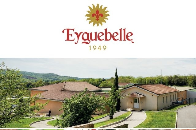DOMAINE EYGUEBELLE – SIROPS & LIQUEURS<p class='ctp-wud-title' style= 'font-family:inherit; font-size: 12px; line-height: 13px; margin: 0px; margin-top: 4px;'><span class='wudicon wudicon-category' style='font-size: 12px;'>  </span><a href=