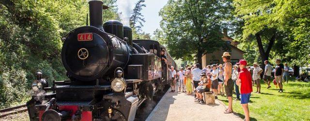 Le Train de L'ardèche ou Mastrou pour les connaisseurs