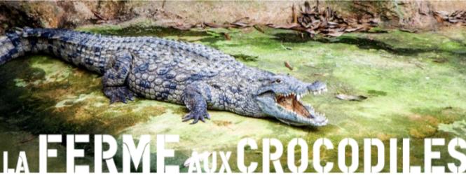 LA FERME AUX CROCODILES à PIERRELATTE  : Premier site touristique de la Drôme